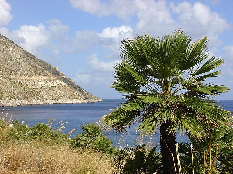800px-Zingaro_Sicilia_2005-09-30-1