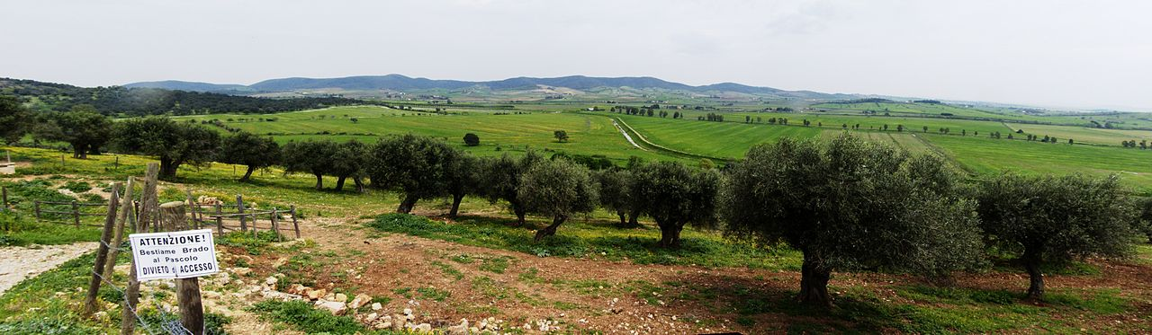 1280px-Maremma_panorama_from_buratta