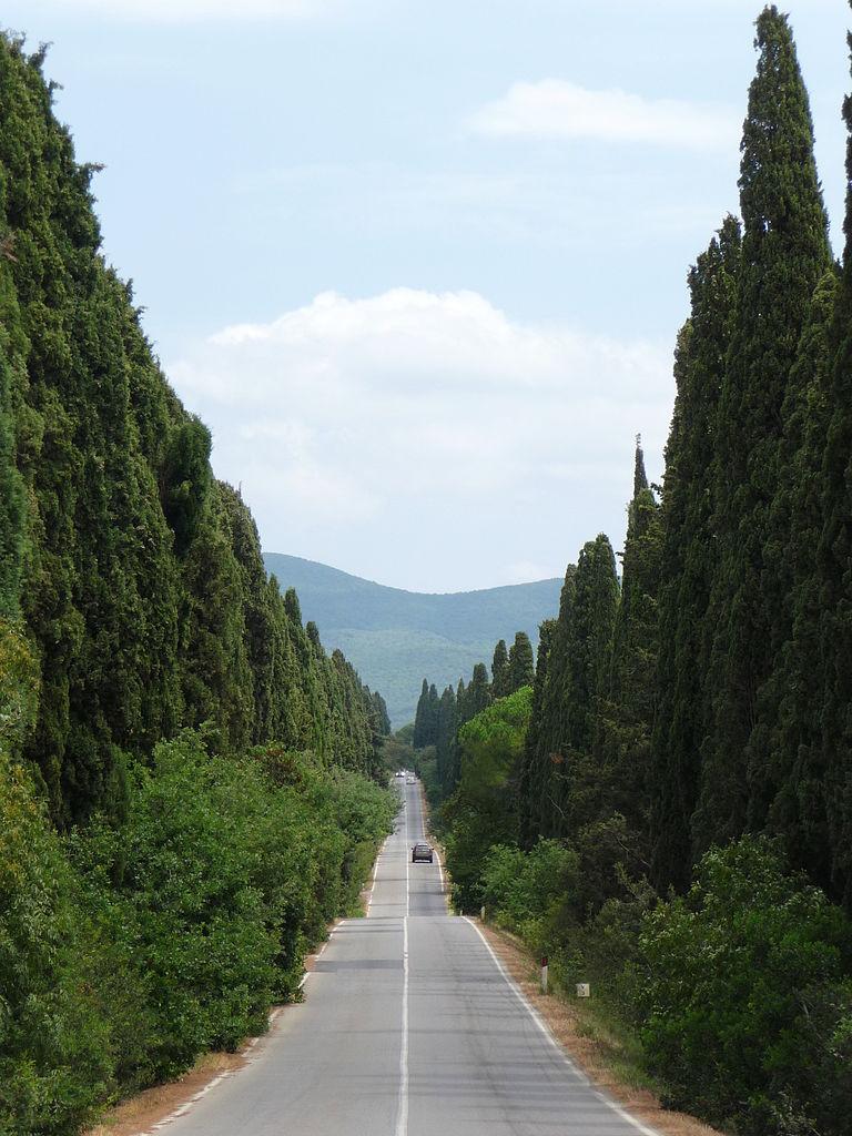 768px-Viale_dei_Cipressi,_Bolgheri,_Castagneto_Carducci