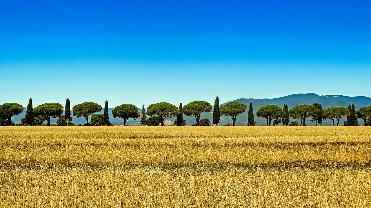 tuscany-504314_1280