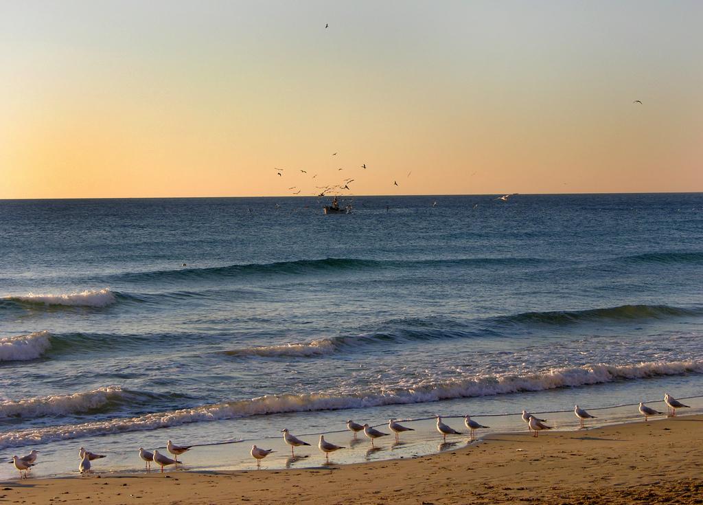 Alassio_Beach