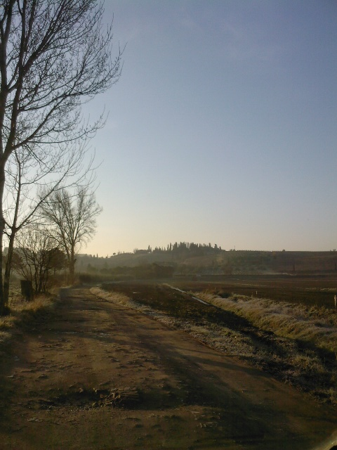 Empoli's_Countryside